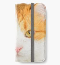 Clever cat iPhone Wallet/Case/Skin
