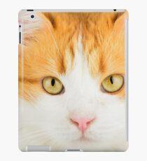 Clever cat iPad Case/Skin