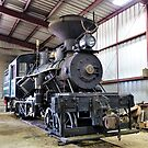 Narrow Gauge Steam Locomotive - Sumpter Valley Railroad, Baker County, OR by Rebel Kreklow