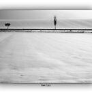austrian winter by hans eder