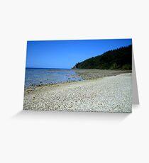 Steens beach Greeting Card