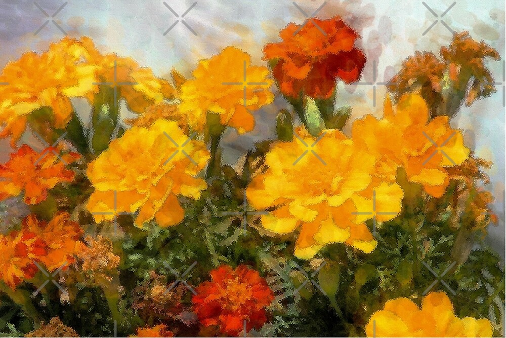 Dance of the Marigolds by CarolM