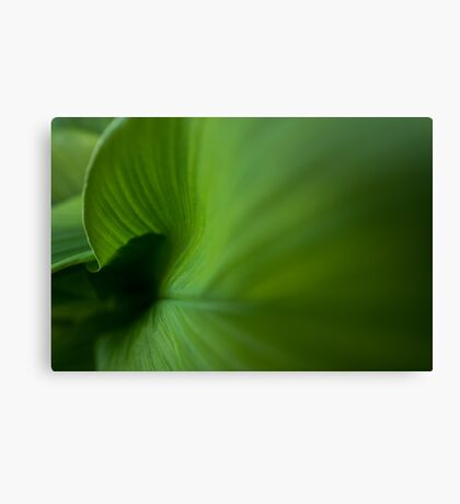 Wave of Green Canvas Print