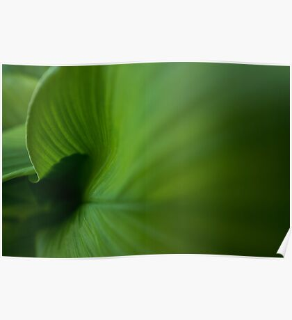 Wave of Green Poster