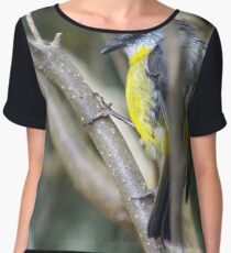 Eastern Yellow Robin Chiffon Top