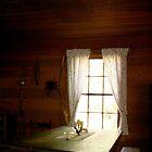 Light in the Cabin Window by Seth  Weaver