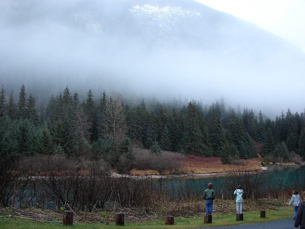 Fog in Haines, Alaska by alamhot