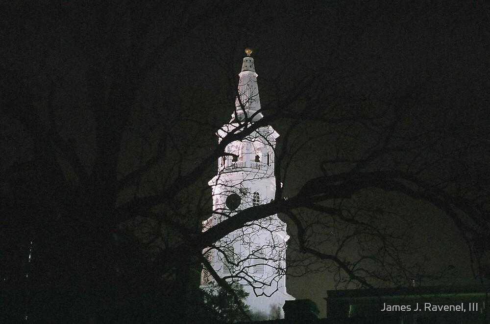 One Of Gods Houses by James J. Ravenel, III