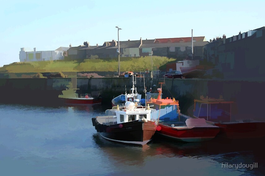 Harbour at Seahouses by hilarydougill