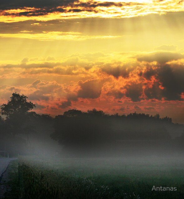 Daybreak on the way by Antanas