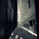 Light's Vision by Ben Loveday