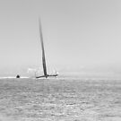 Oracle Team USA - San Francisco Bay by Kasia-D