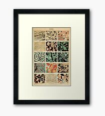 crystals print - geology print Framed Print