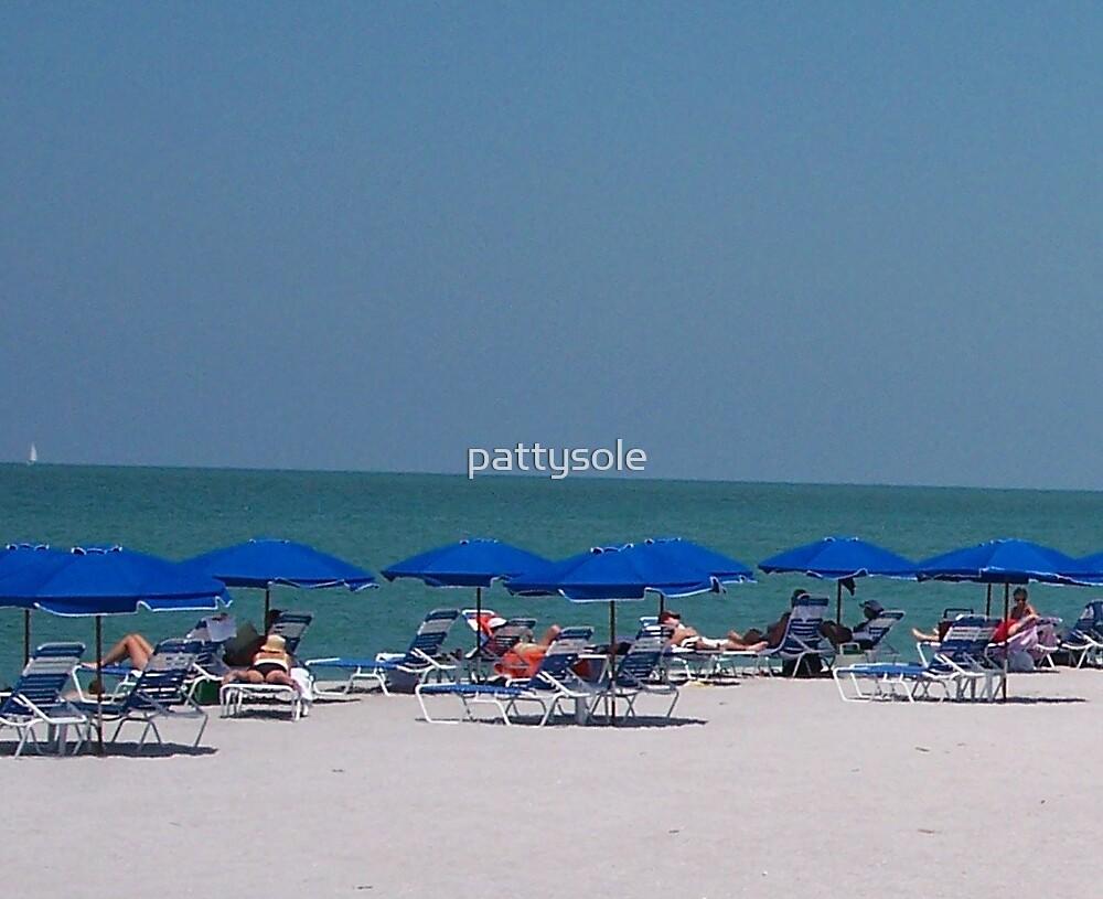 Sanibel Beach Florida by pattysole