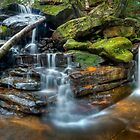 Lower Somersby Falls, Australia by Erik Schlogl
