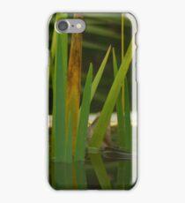 Water plants iPhone Case/Skin
