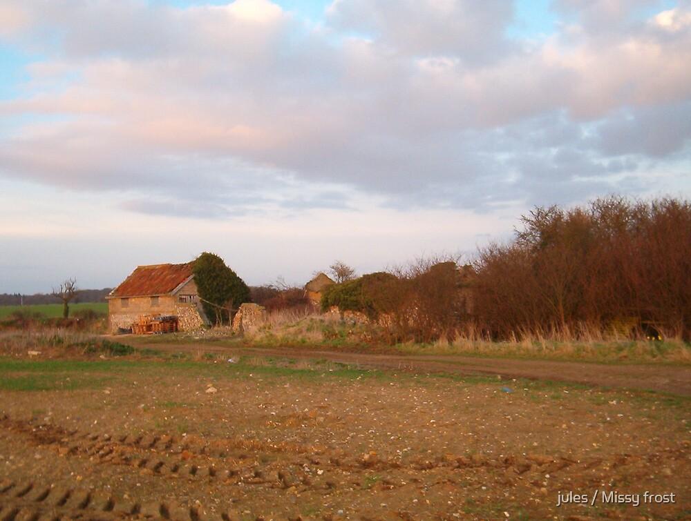 Farm ruin by jules / Missy frost