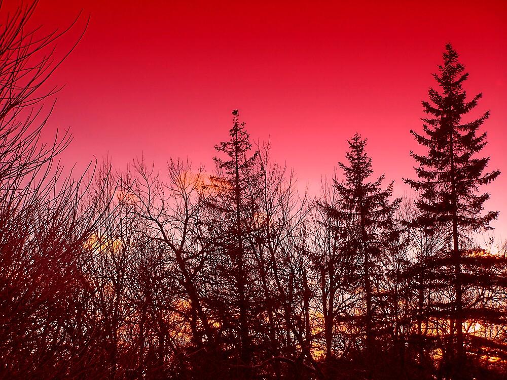 Red Sky At Nite by Gene Cyr