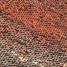 The covering of a roof  by Irina777