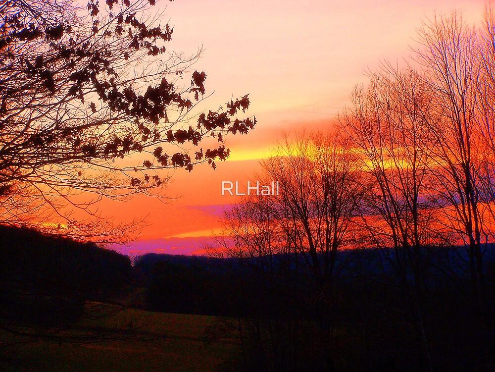 Skylight by RLHall