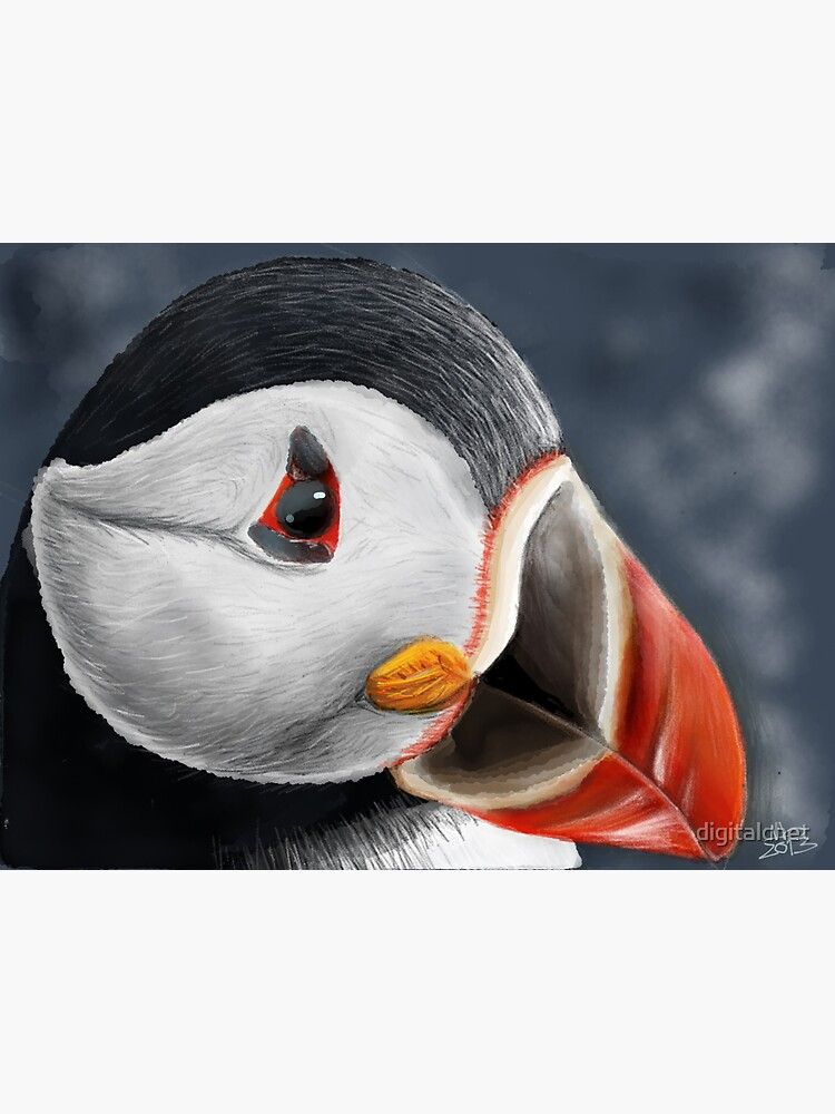 Puffin by digitalchet