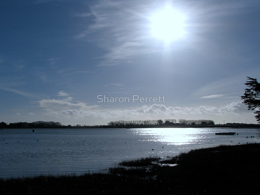 The sun escaped for the day by Sharon Perrett