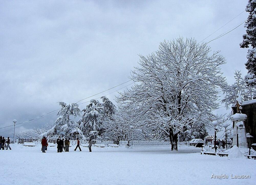 Beautiful Snow by Anaida  Lawson