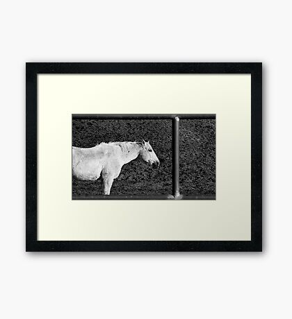 Hi-Yo Silver, away? Framed Print