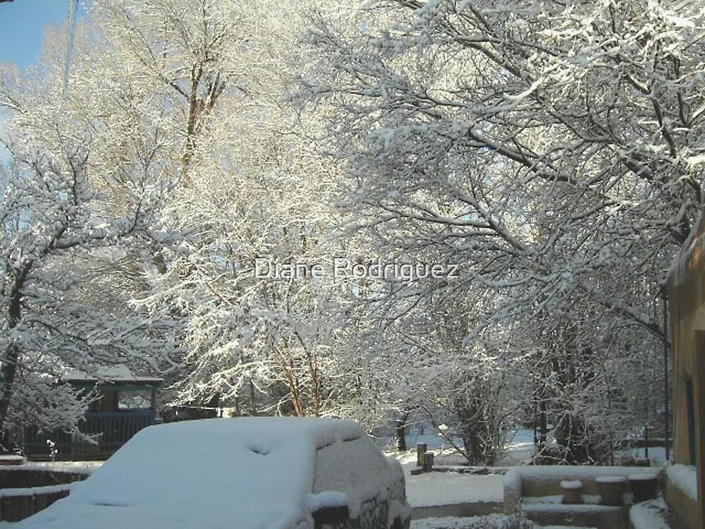 Winter My Casita by Diane Rodriguez