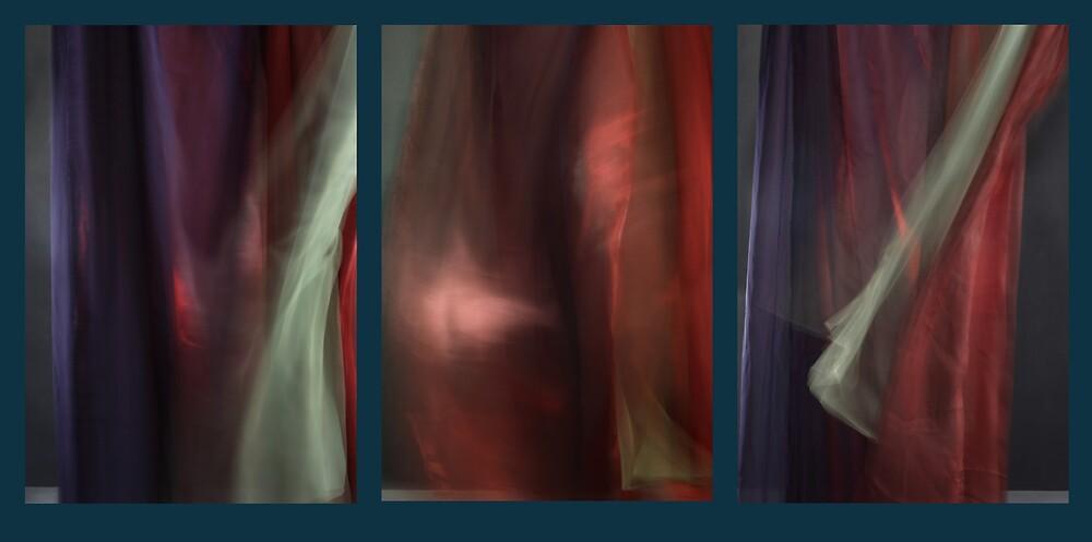 Triptych by lawrencew