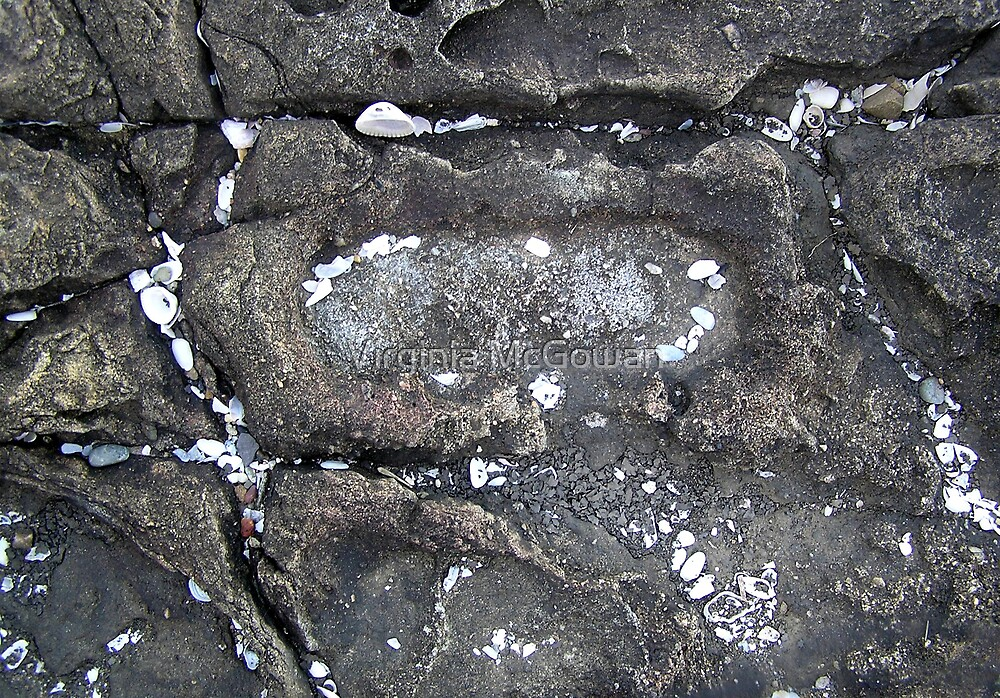 Footprint from the past ?  #2 by Virginia McGowan