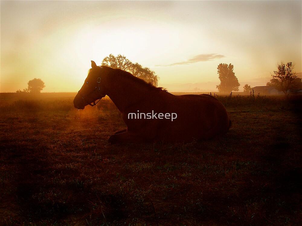 Daybreak  by minskeep