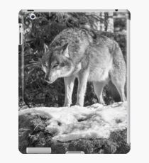 Timber Wolf Winter Menaces iPad Case/Skin