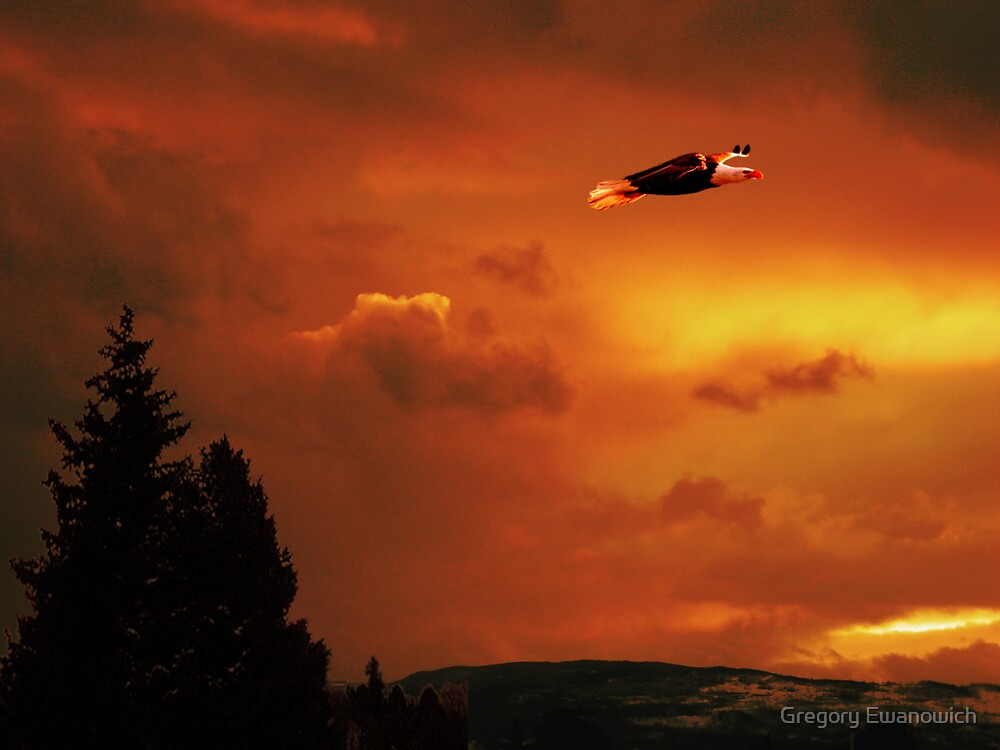 Soaring High Sunset by Gregory Ewanowich