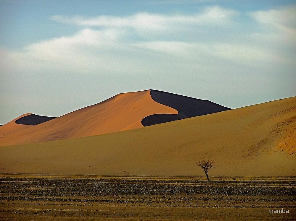 sandy curves by mamba