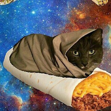 burrito kat by taco-elgato