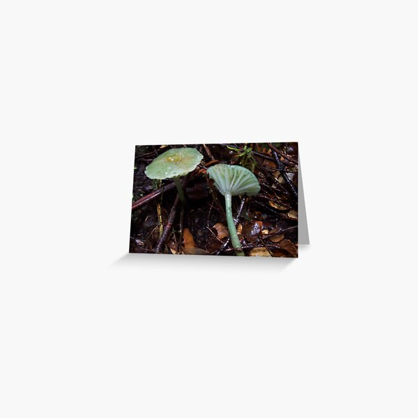 green mushroom Greeting Card