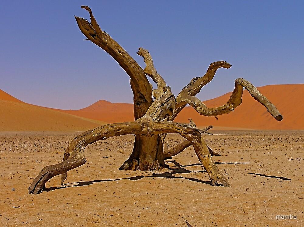 desert gladiators by mamba