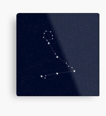 Pisces Starry Night Constellation Metal Print