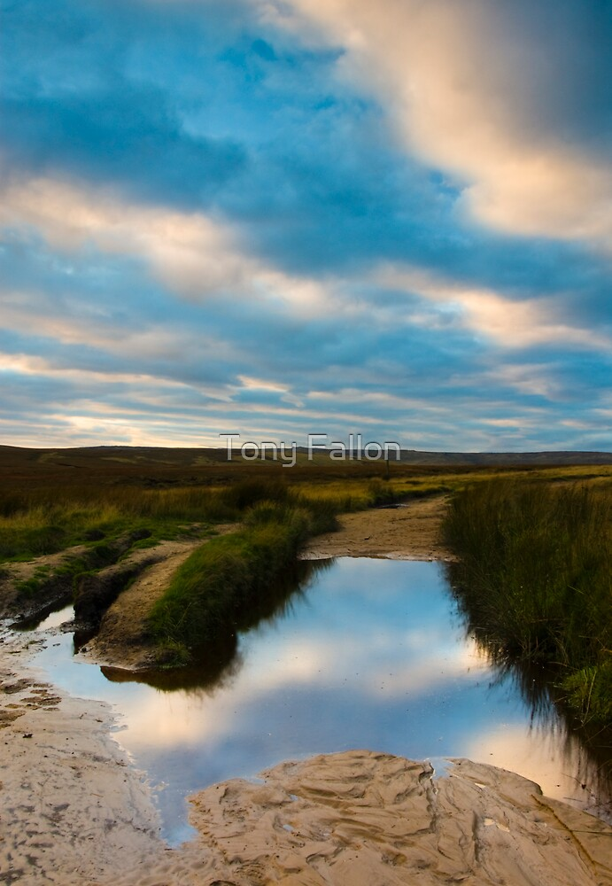 Edale Blue by Tony Fallon