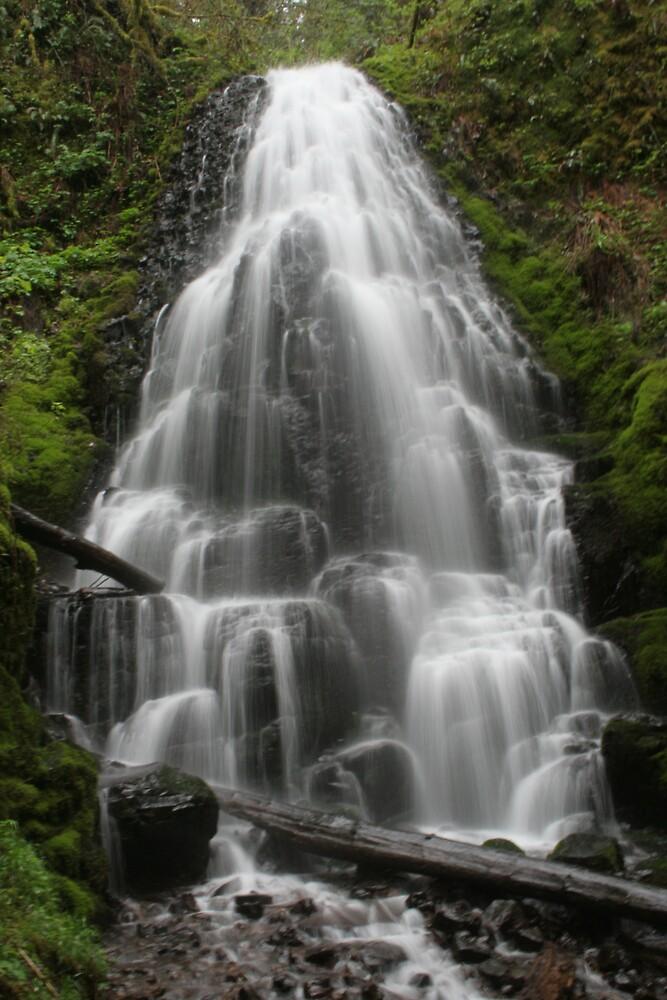 Waterfall by Amy Trebilco
