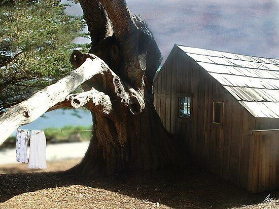 Washday at the Involuntary Treehouse by Wayne King