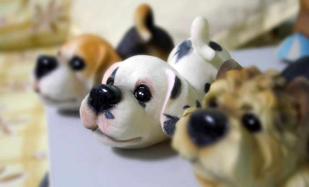 Dogs by Ganz