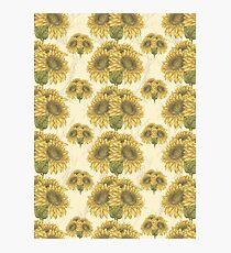 Sunflower Bouquet Pattern 1 Photographic Print