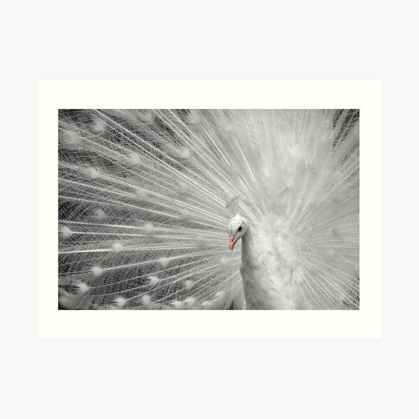 White Princess Art Print