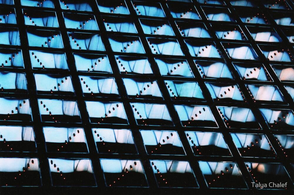 reflections on a city by Talya Chalef