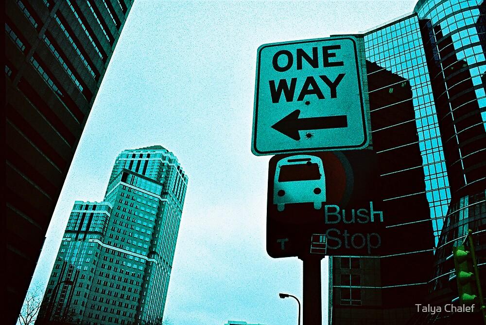 One Way Bush Stop.  by Talya Chalef