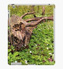 Spring in Heery Woods iPad Case/Skin