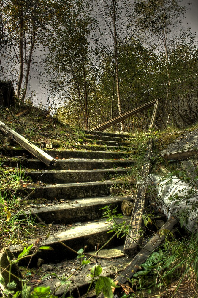 Sticks and stairs by Richard Shepherd