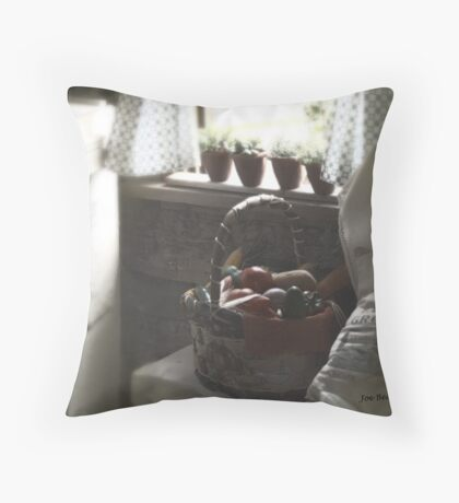 Inside the Cabin Throw Pillow